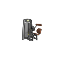 DHZ LOWER BACK- mélyhátizom gép