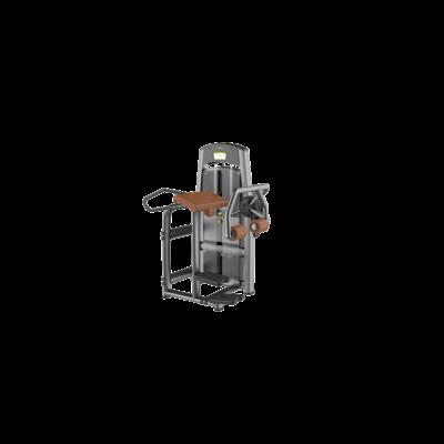 DHZ® GLUTE ISOLATOR- farizom gép