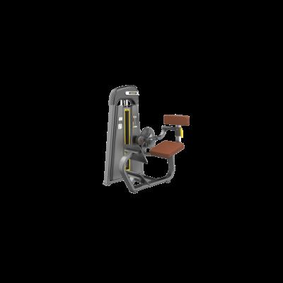 DHZ BACK EXTENSION2- mélyhátizom gép
